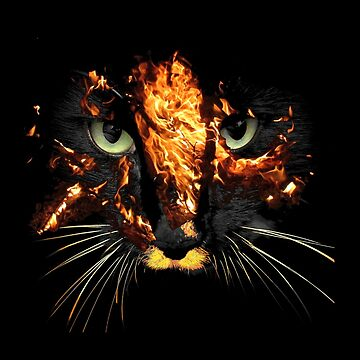 Fire Cat by ingridthecrafty