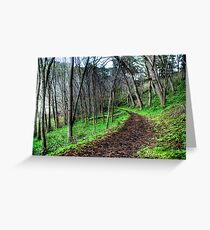 Forrest Valley Lakes Greeting Card