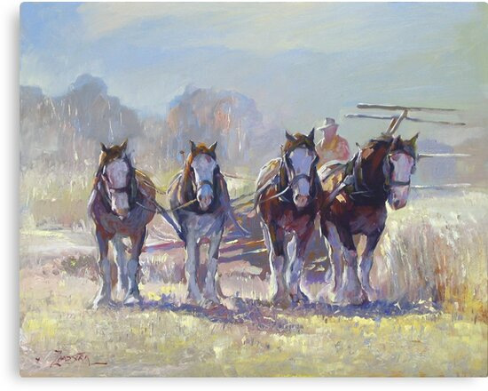 Draught Horses after Max Middleton  by Tanya Zaadstra