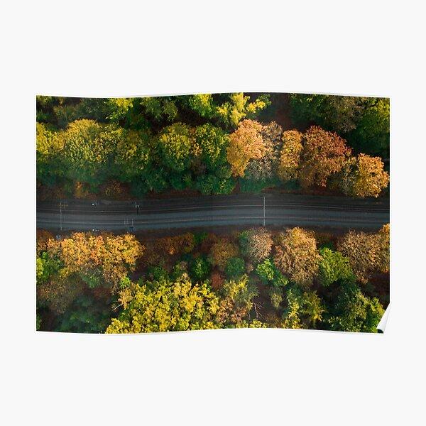 Autumn Tracks (horizontal) Poster