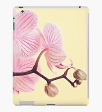 Pink phalaenopsis orchid blossoms iPad Case/Skin