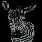 Zebra by RKCreations