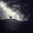 ¨antes de la tormenta¨ by Luis Beltrán