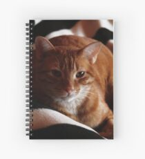 Is it time to get up? Cuaderno de espiral