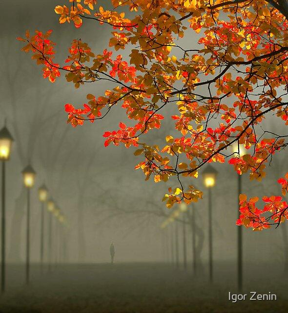 Alone by Igor Zenin