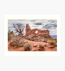 Weathered Landscape Art Print