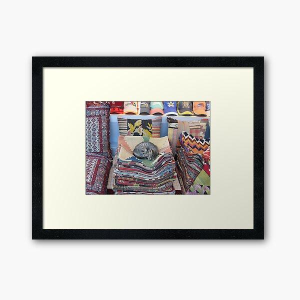 Grand Bazaar Kitten Framed Art Print