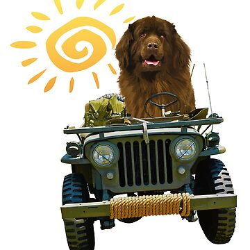 Jeep Driving Dog by itsmechris