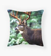 King of Winter 2 Throw Pillow
