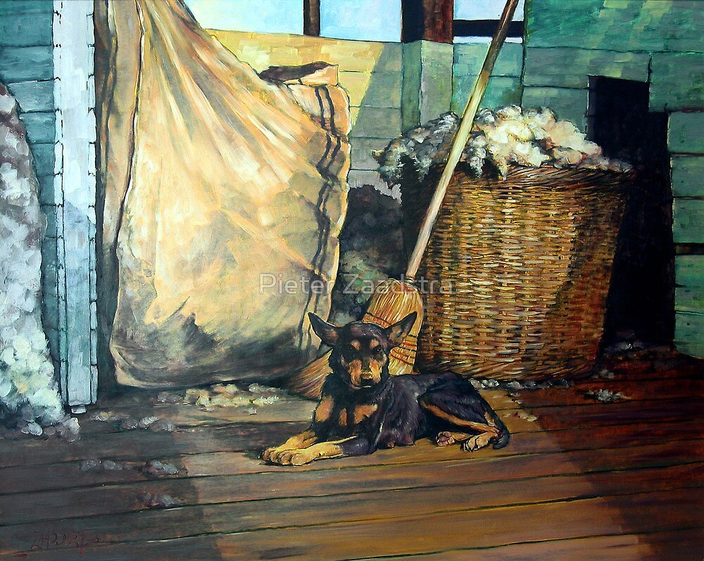 The Master of the Shed - Australian Kelpie series by Pieter Zaadstra