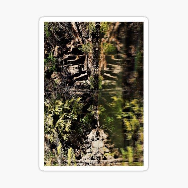 Nature's fractal 3: Northwest Bay Brook, NY Sticker