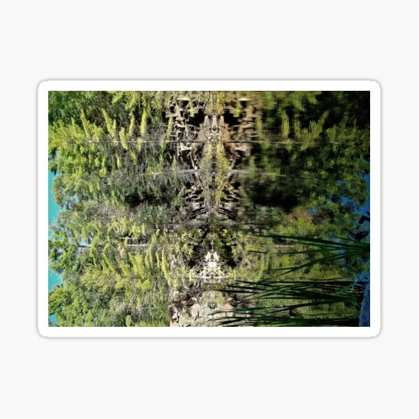 Nature's fractal 4: Northwest Bay Brook, NY Sticker