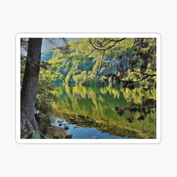 Chapel Pond, NY Sticker