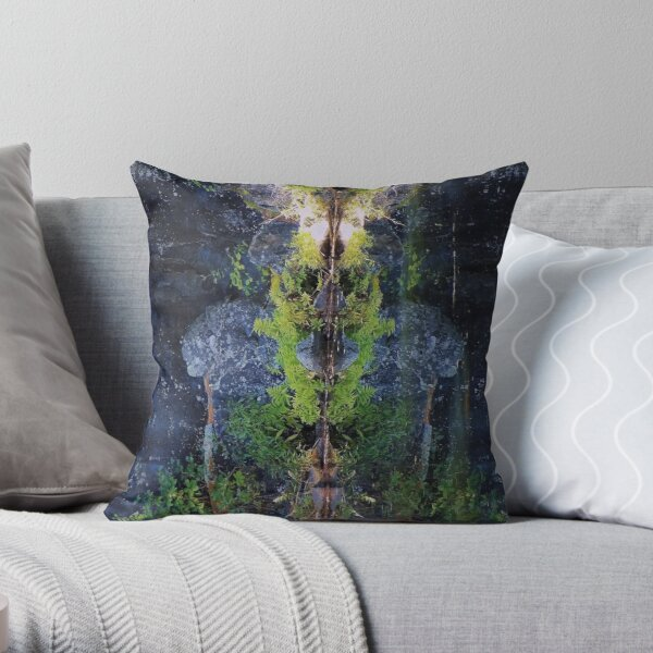 Nature's Fractal 5: Northwest Bay Brook, New York Throw Pillow