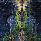 Nature's Fractal 5: Northwest Bay Brook, New York by Doug Michael