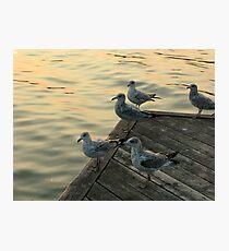 LAKE ONTARIO Photographic Print