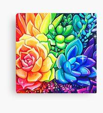 Rainbow Succulents - Acrylic Painting Canvas Print