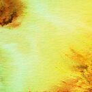 Ombre watercolor splashes & swirls by shoshannahscrib