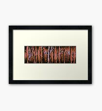 Bushfire Framed Print