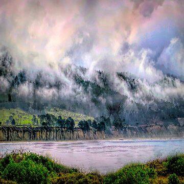 The Jungle by linaji