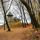 medieval fortress in autumn leafless forest by mike-pellinni