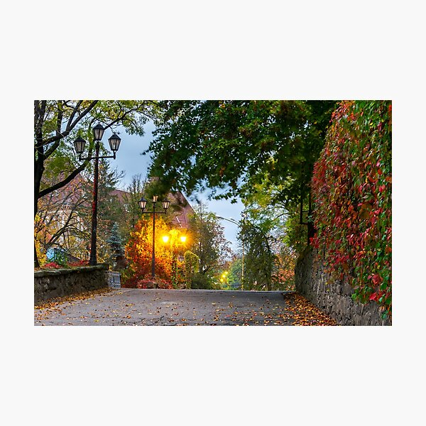streets of old city at dawn Photographic Print