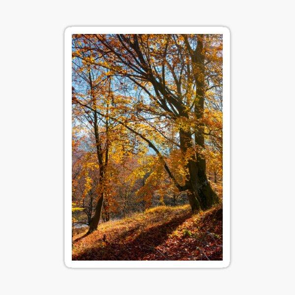 autumn spirits in the woods Sticker