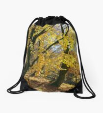 golden foliage in the forest Drawstring Bag