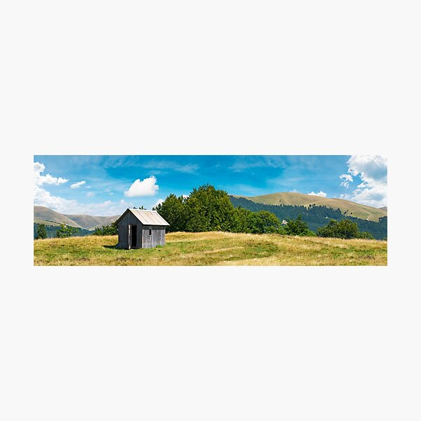 wooden hut on a grassy meadow Photographic Print
