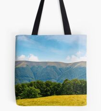 panoramic scene of a summer landscape Tote Bag