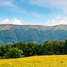 panoramic scene of a summer landscape by mike-pellinni