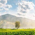 panorama of beautiful mountainous countryside by mike-pellinni