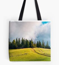 country road in mountains Tote Bag