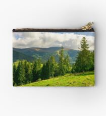 spruce trees on the grassy slope Studio Pouch