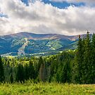 beautiful landscape with forested hills by mike-pellinni