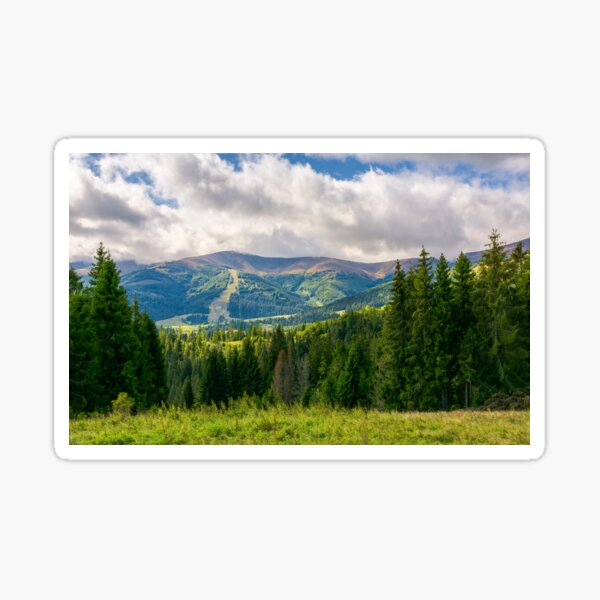 beautiful landscape with forested hills Sticker