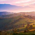 purple sunrise in foggy countryside by mike-pellinni