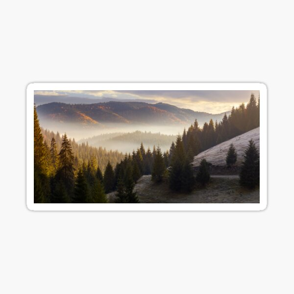 sea of fog in forested valley Sticker