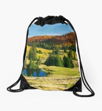 pond on a grassy meadow among spruce trees Drawstring Bag