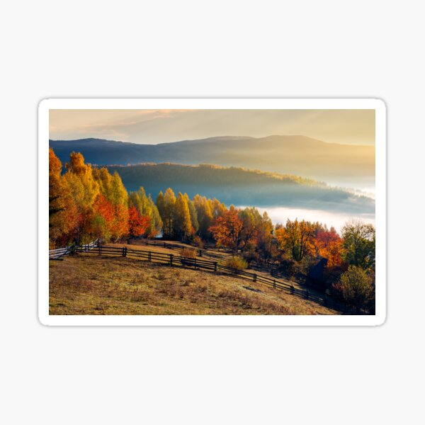 rural field and orchard in autumn at sunrise Sticker
