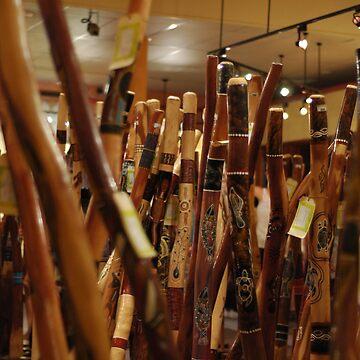 didgeridoo by chayanaim