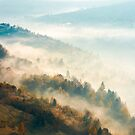 beautiful foggy autumn background by mike-pellinni