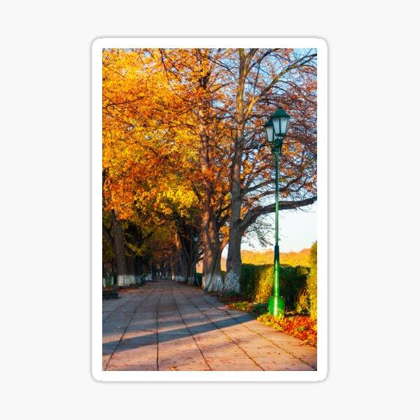 green city light on autumn embankment Sticker