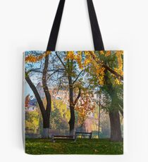 autumn park on Pravoslavna naberezhna Tote Bag
