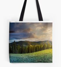 time change concept above alpine forest glade Tote Bag