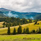 overcast autumn day in mountains by mike-pellinni
