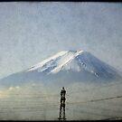 Fuji by Marcia Luly