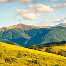 panorama of autumn countryside with grassy rolling by mike-pellinni