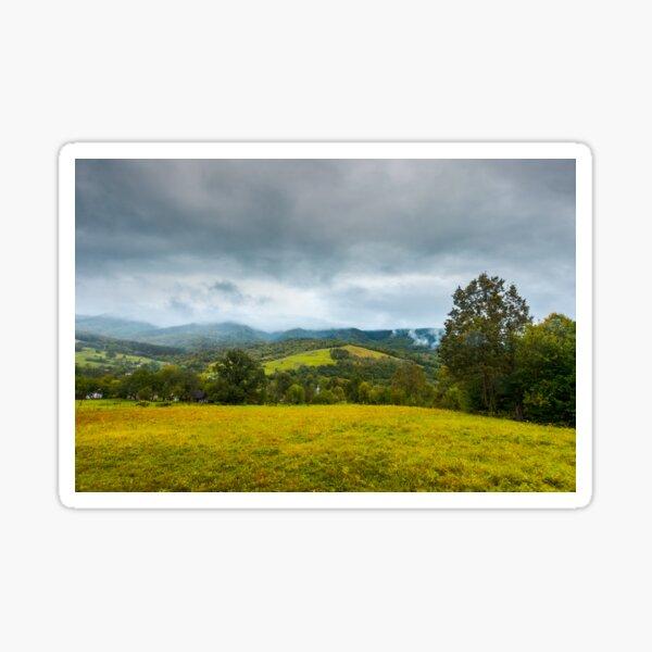grassy rural meadow in mountains Sticker