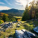 rocky cliff above the forested valley by mike-pellinni